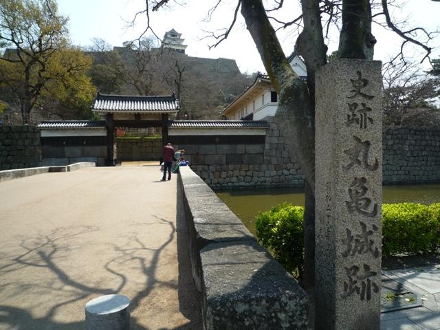 kagawa1-5.jpg