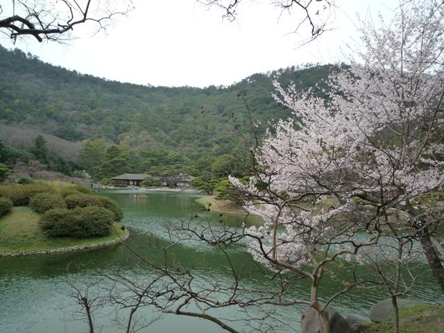 kagawa2-5.jpg