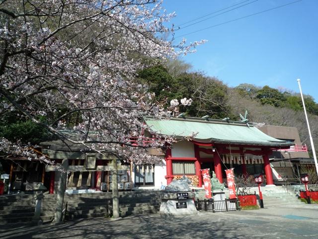 tokushima2-1.jpg